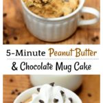 Microwave Peanut Butter and Chocolate Mug Cake